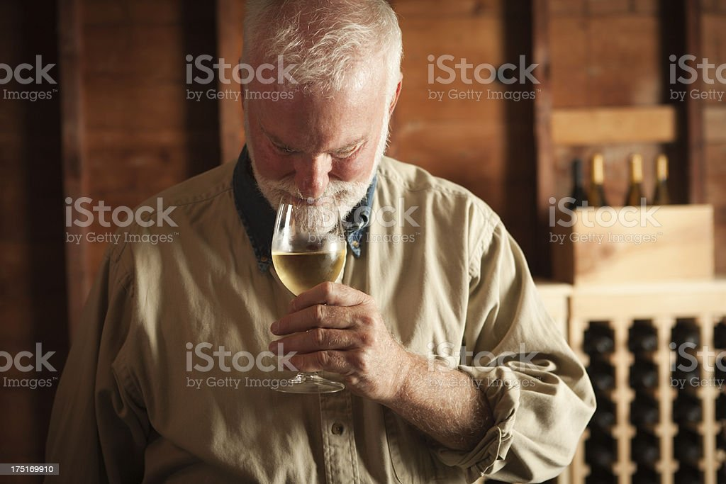 Winemaker Tasting Glass of Chilled White Wine in Cellar Horizontal royalty-free stock photo