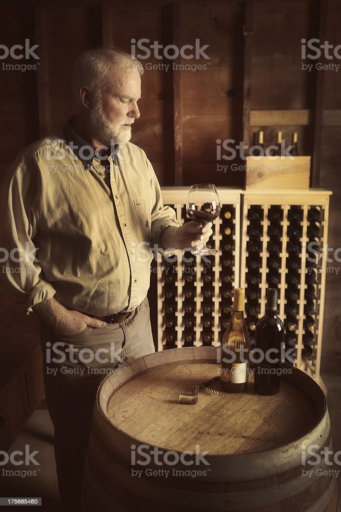Winemaker Tasting His Red Wine in the Cellar Vertical royalty-free stock photo