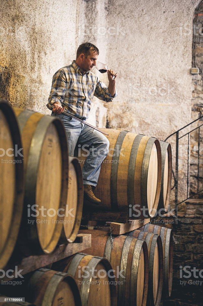 Winemaker Tasting Red Wine, Close-up stock photo
