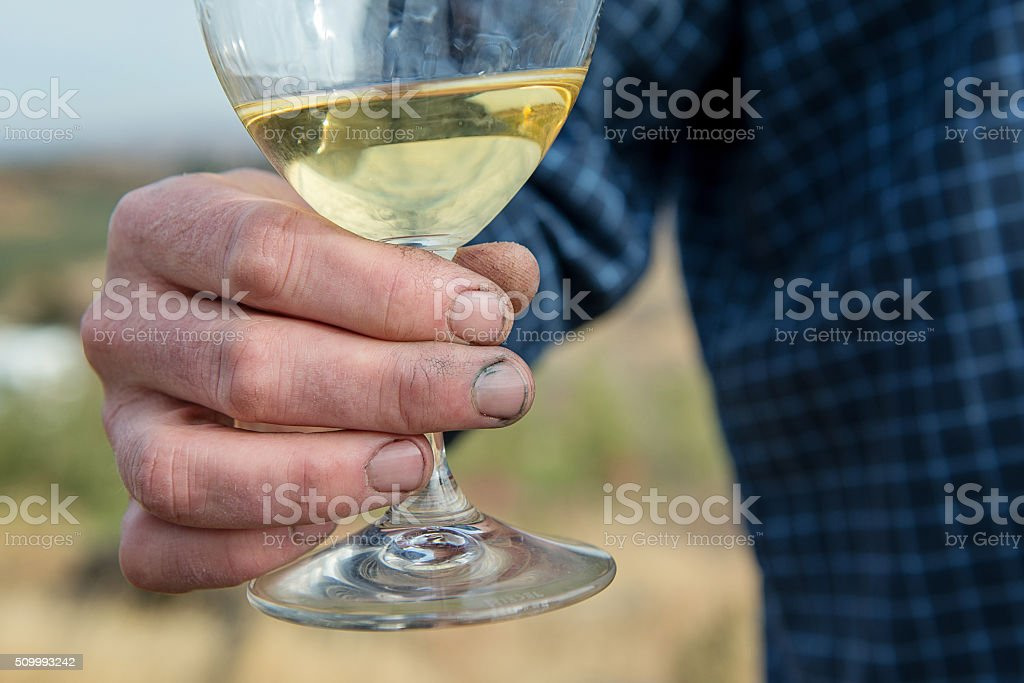 Winemaker's Hands stock photo