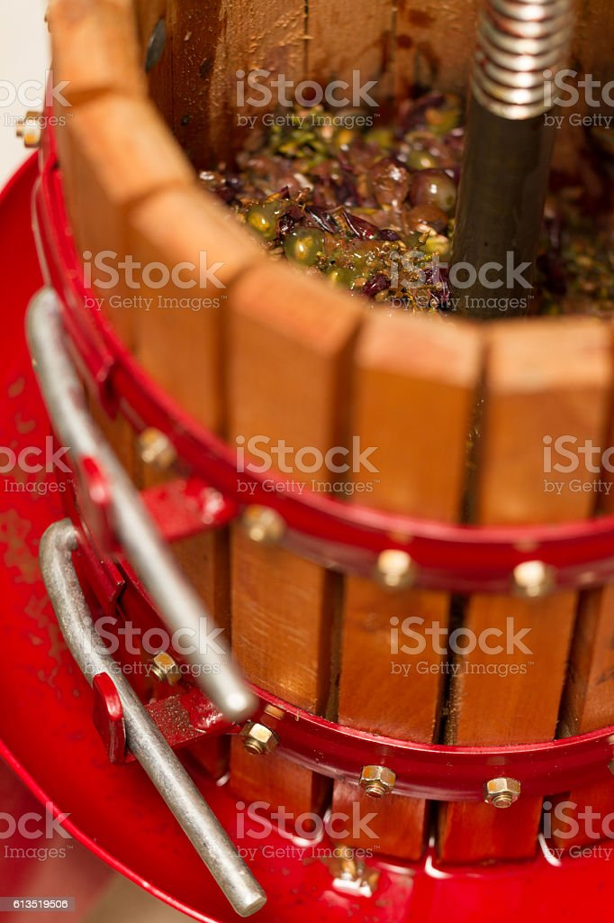 Winepress I stock photo