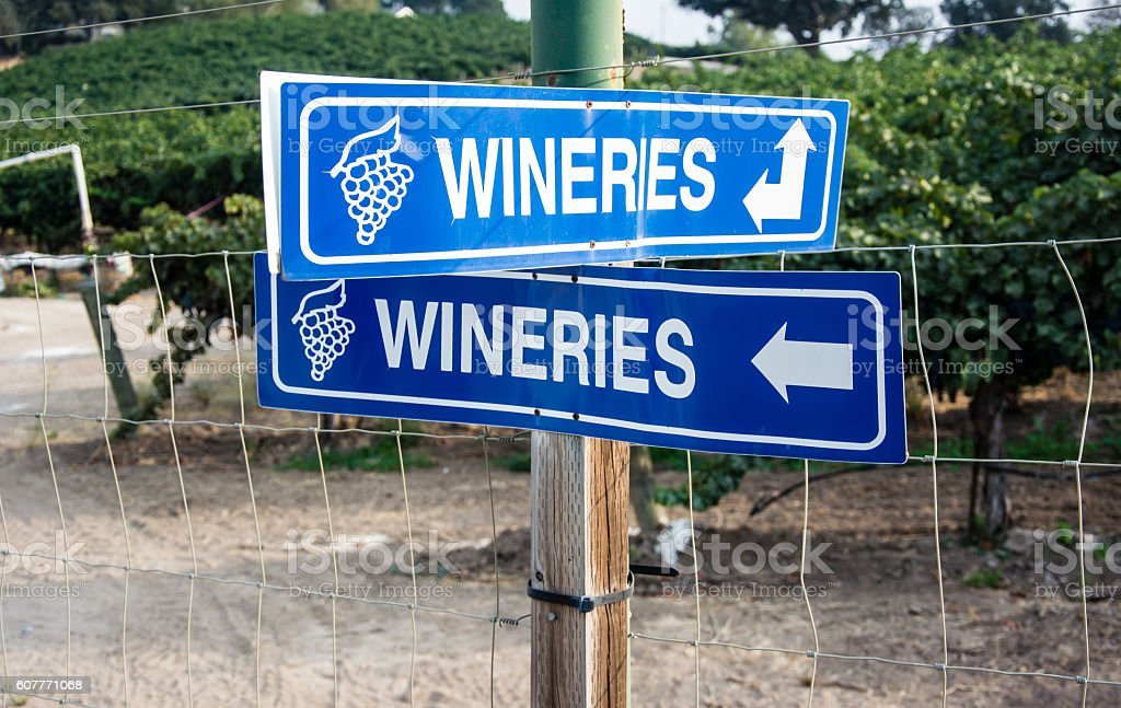 WIneries in every direction stock photo