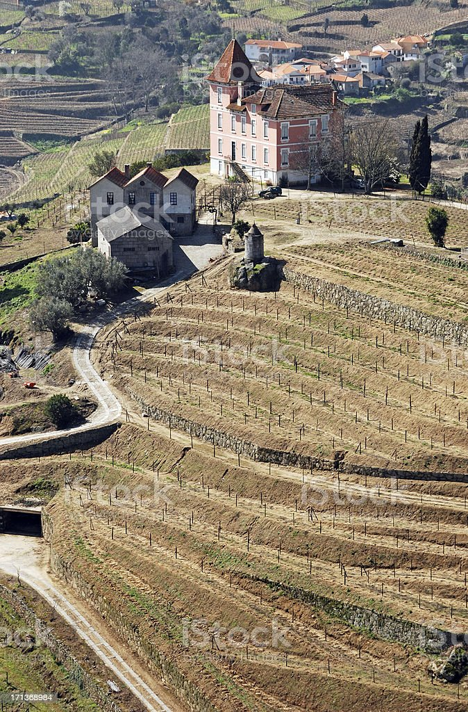 Winery and vines on hill above Douro River in Portugal stock photo