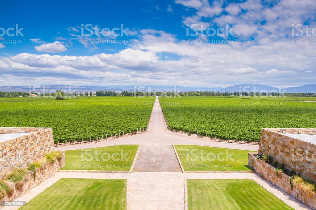 Winery in Mendoza, Argentina stock photo