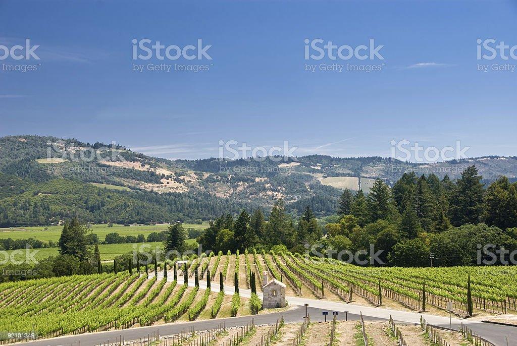 Winery in Napa, California royalty-free stock photo