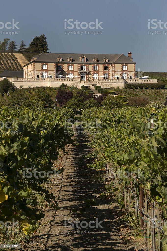 Winery, Napa Valley, California royalty-free stock photo