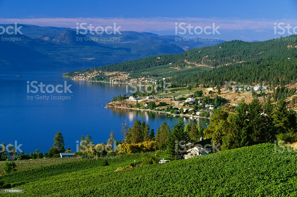 Winery rural scenic lake landscape stock photo