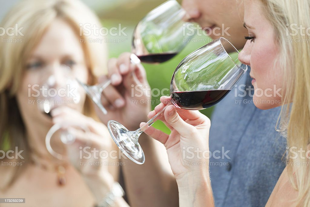 Winetasting Group, People Smelling and Tasting Napa Valley Red Wine royalty-free stock photo