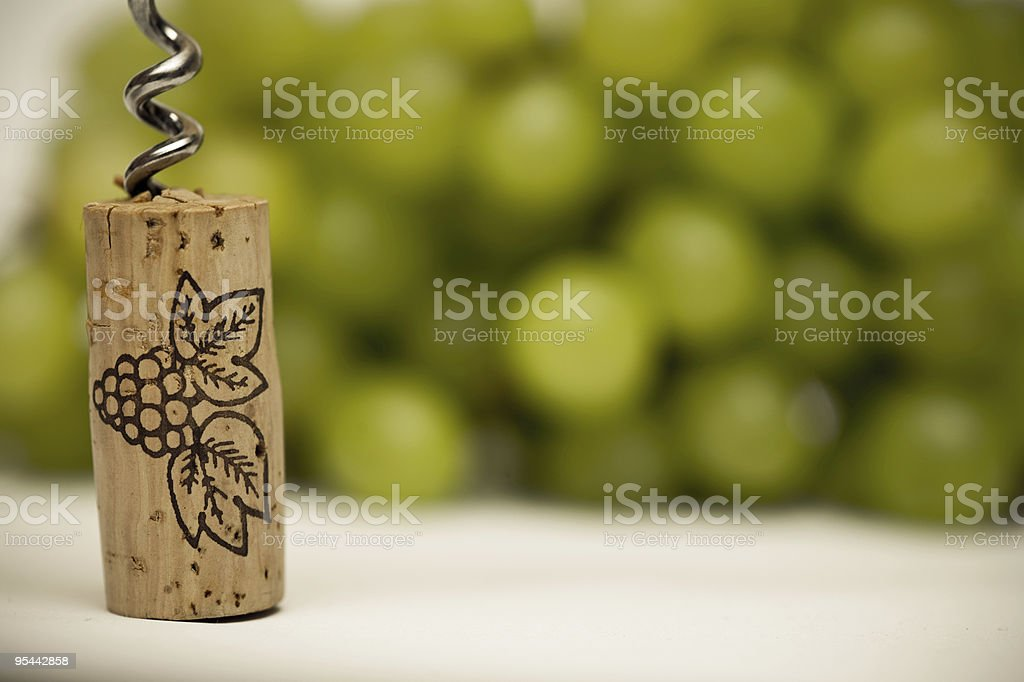Winetasting royalty-free stock photo