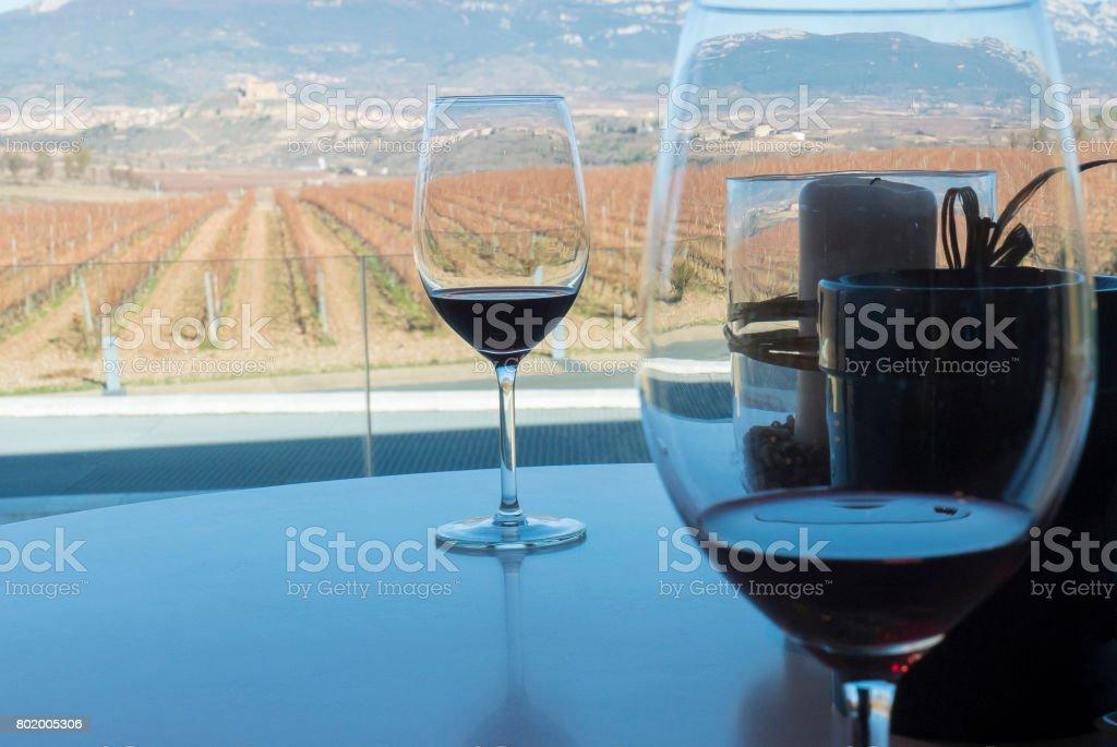 Wineyard sited in la rioja spain stock photo