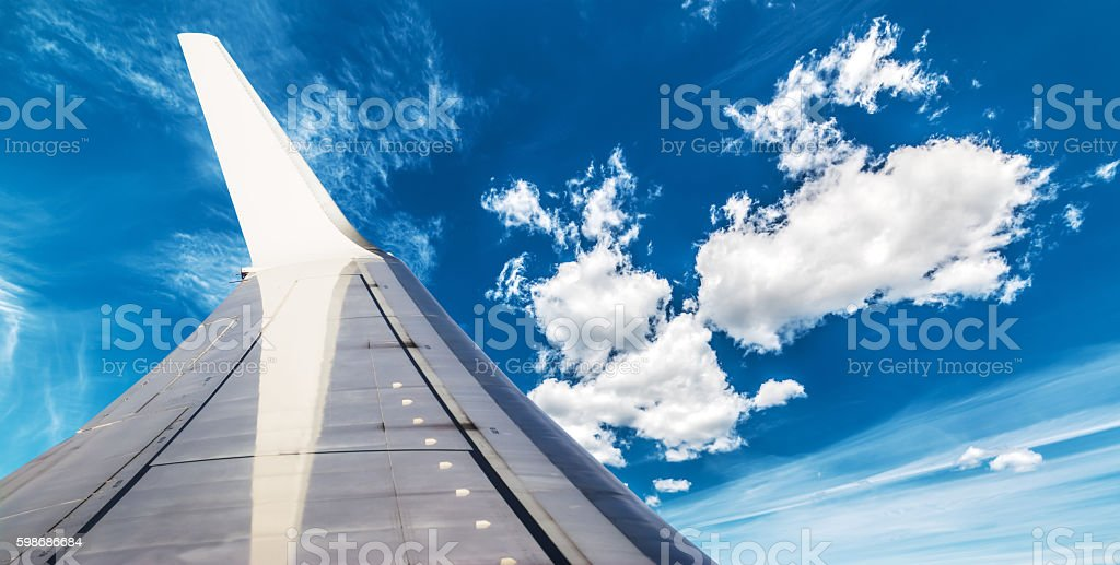 wing in the blue sky stock photo