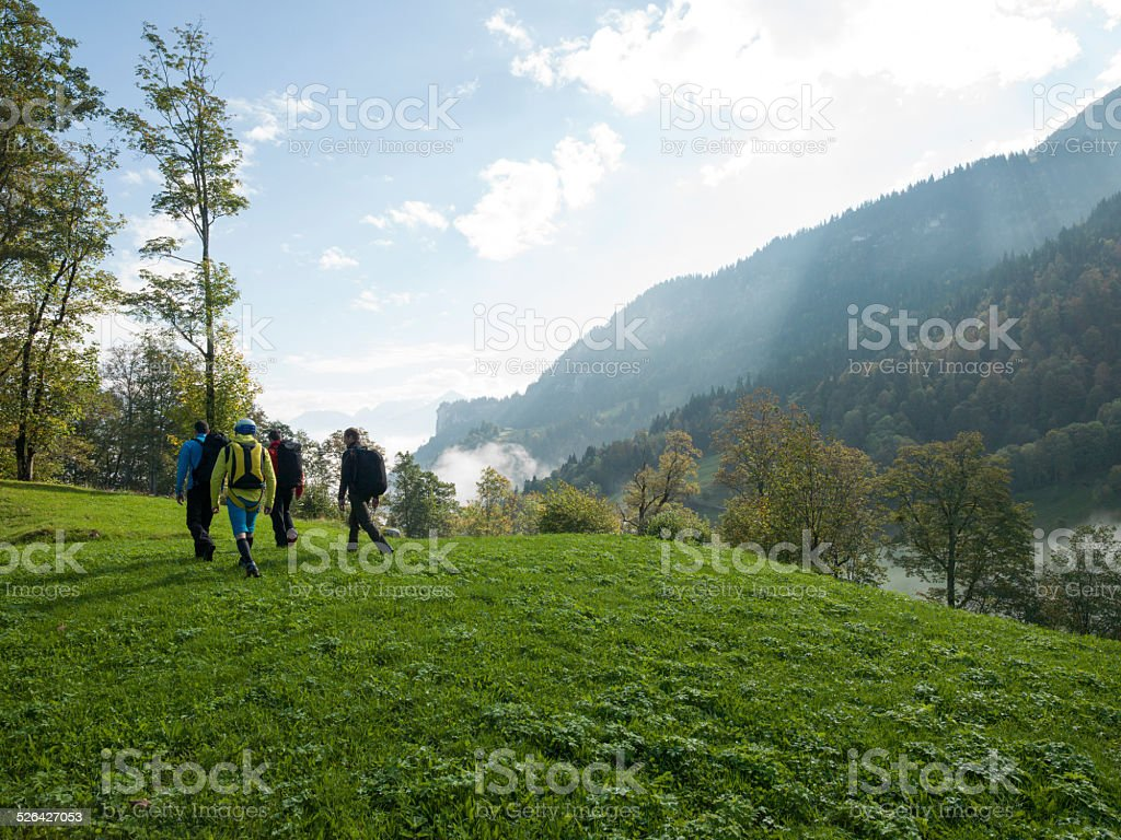 Wing suit fliers walk across meadow to jump stock photo