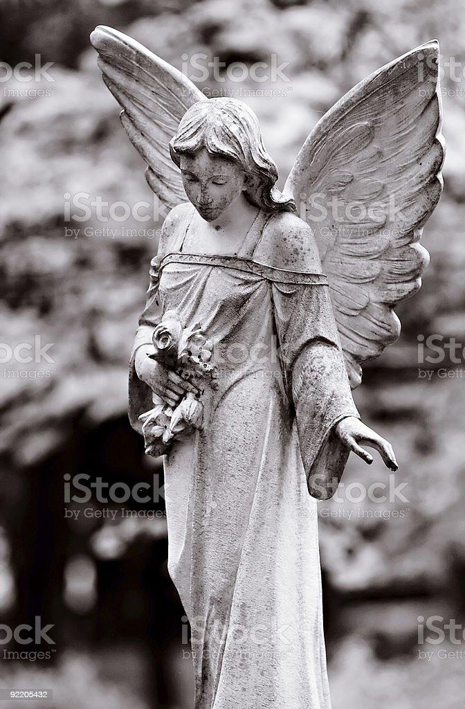 Winged angel stock photo
