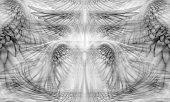 Wings Background Pattern