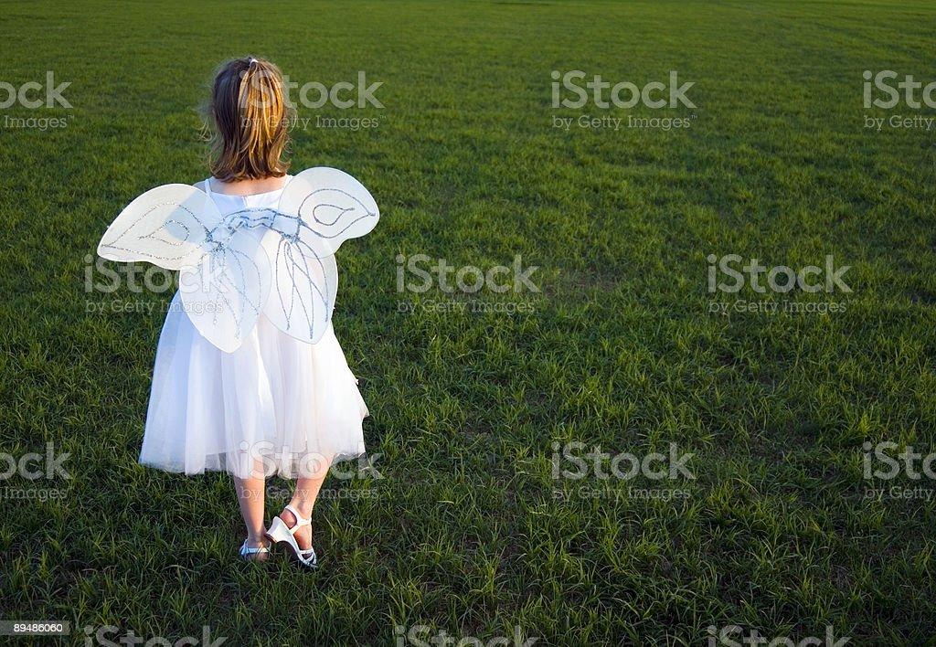 Wings#2 Lizenzfreies stock-foto