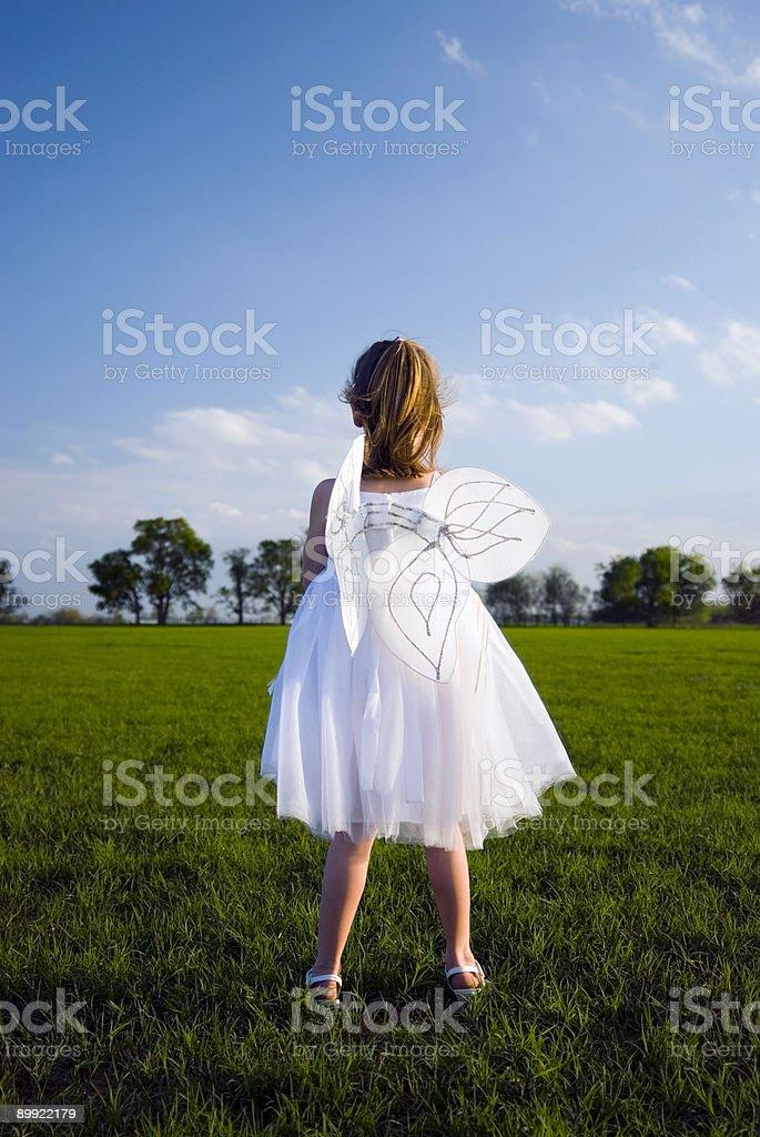 Wings#3 Lizenzfreies stock-foto