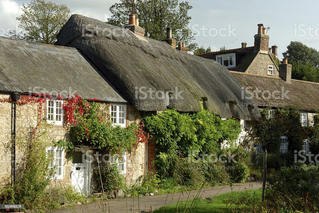 Winkle street buildings with ivy stock photo