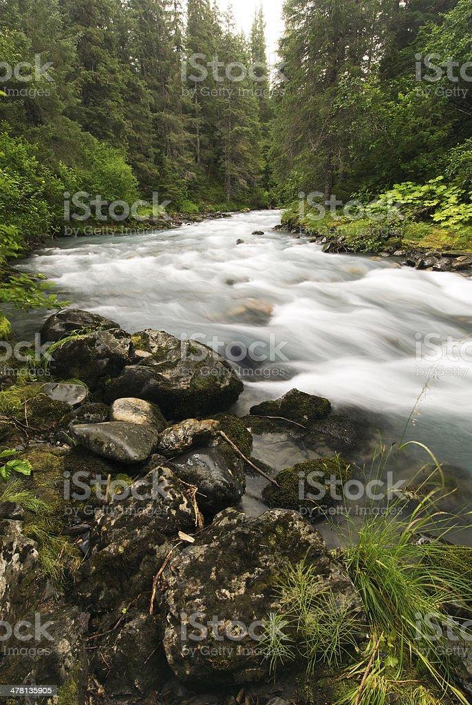 Winner Creek, Girdwood, Alaska stock photo