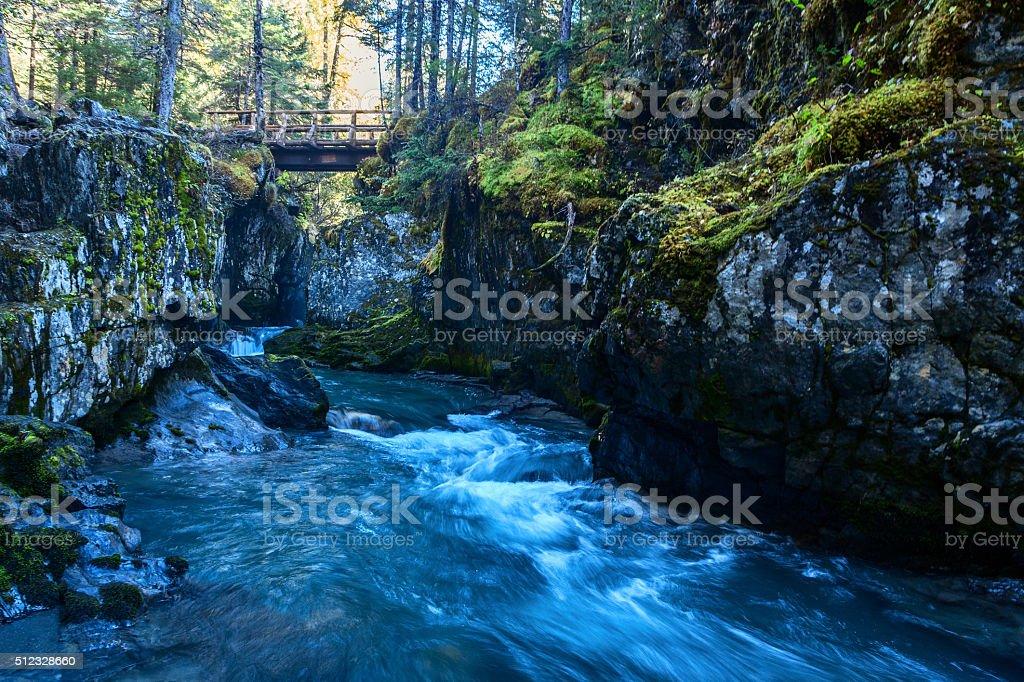 Winner Creek Gorge royalty-free stock photo