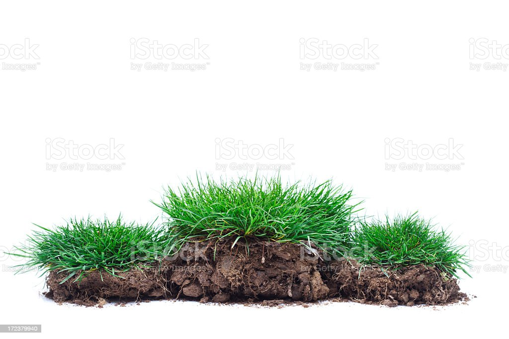 Winners podium of green grass royalty-free stock photo