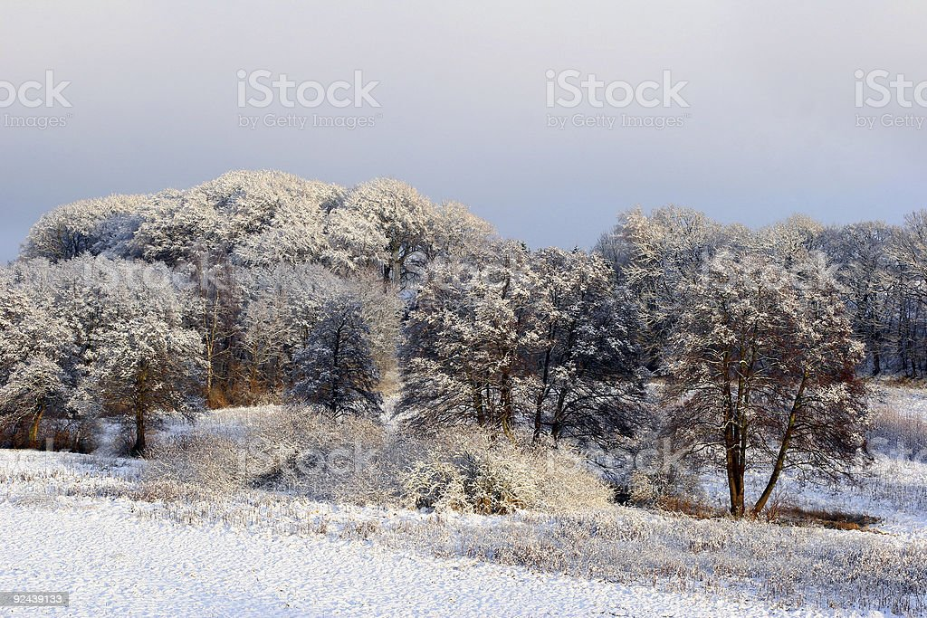 winter 2 royalty-free stock photo