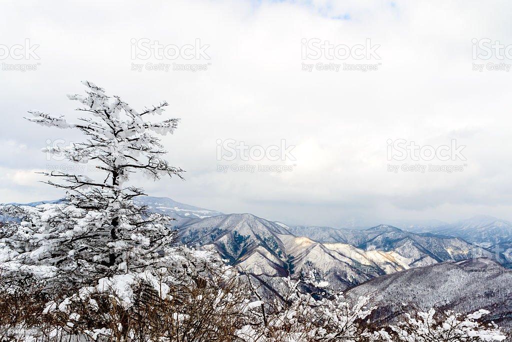 Zimowa alpine scape zbiór zdjęć royalty-free