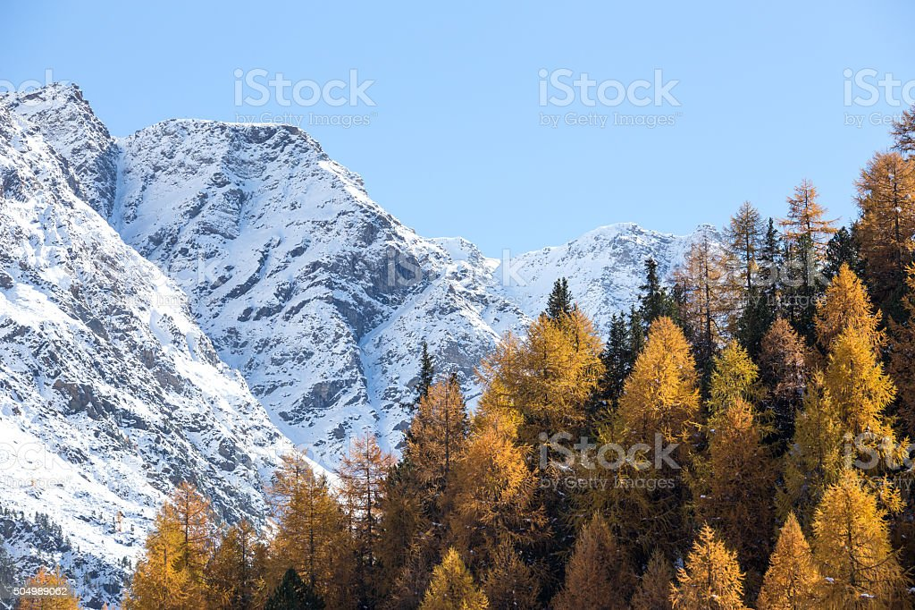 Winter and autumn in the mountains (italian alps) stock photo