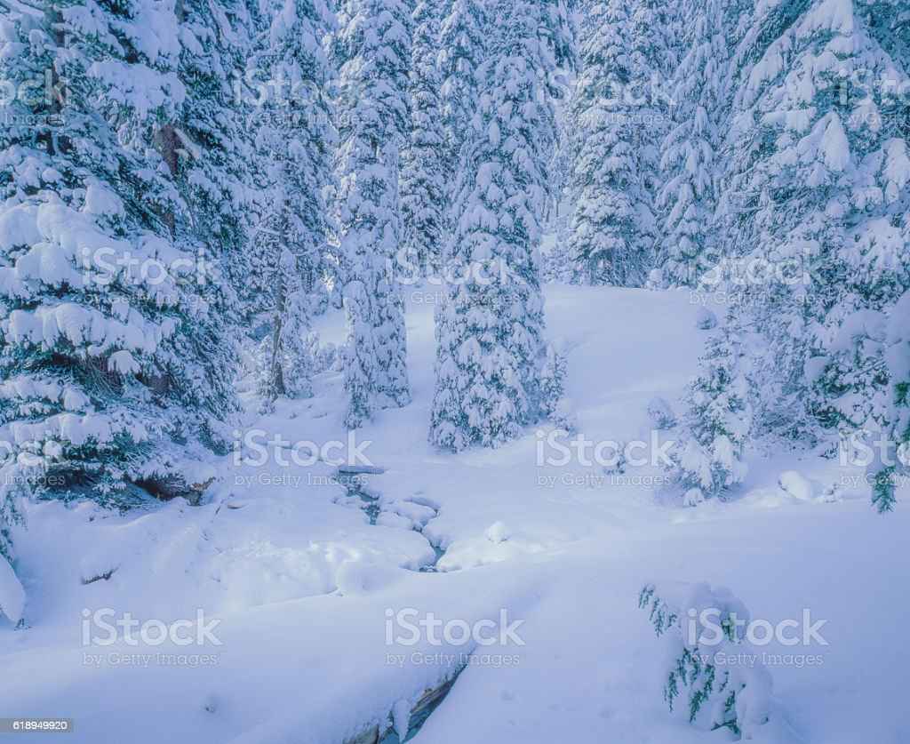 Winter At Crater Lake National Park   (P) stock photo