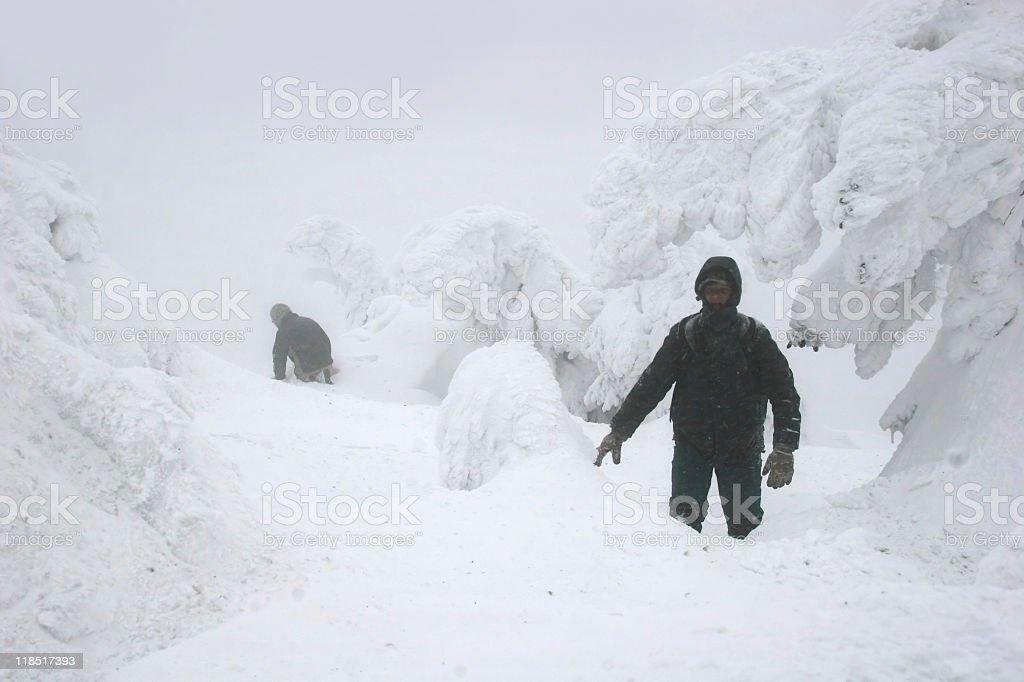 Winter at the german mount Brocken, Harz royalty-free stock photo