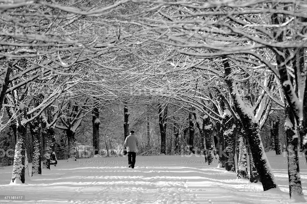 Winter Avenue and old Man royalty-free stock photo