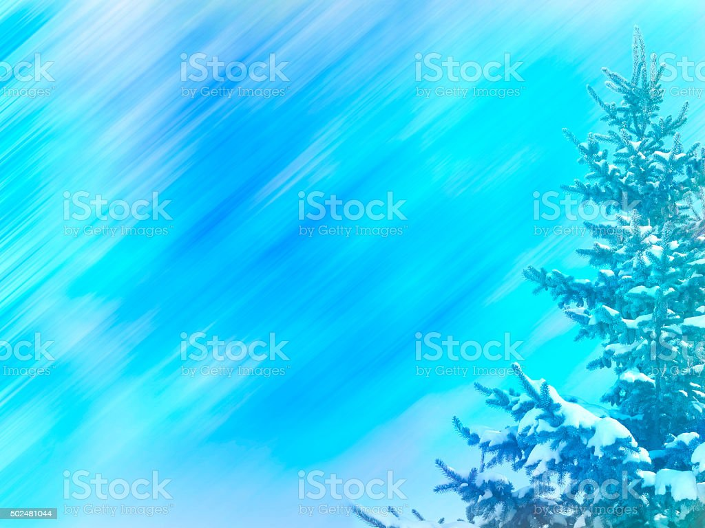 Winter background (with fir-tree) stock photo