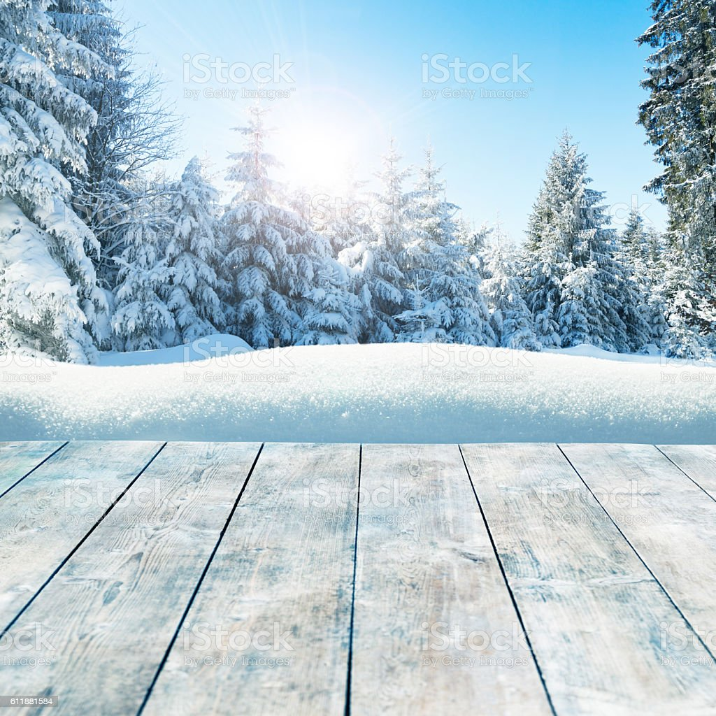 Winter background with snow-covered pine trees behind empty wooden planks stock photo