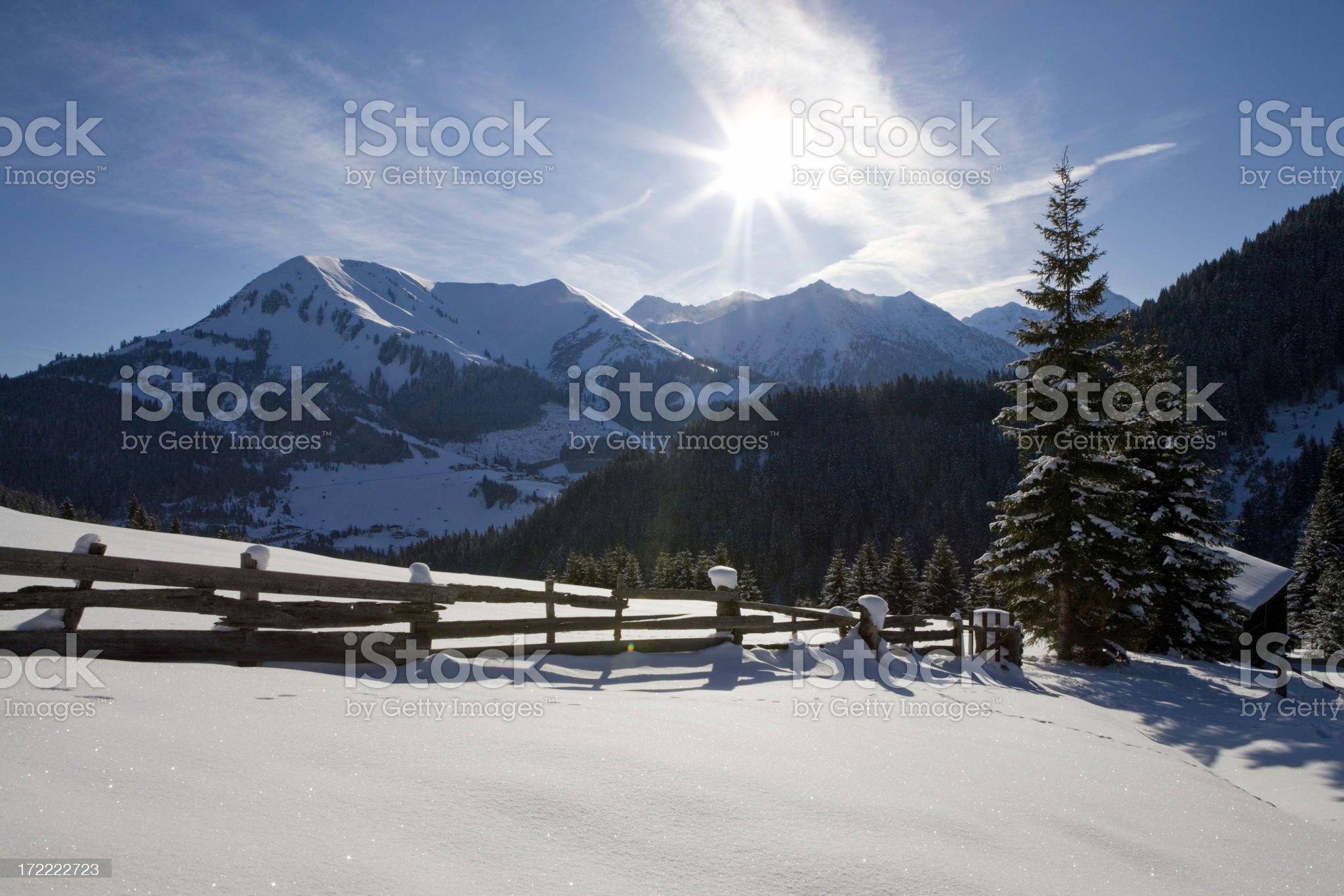 winter backlight royalty-free stock photo