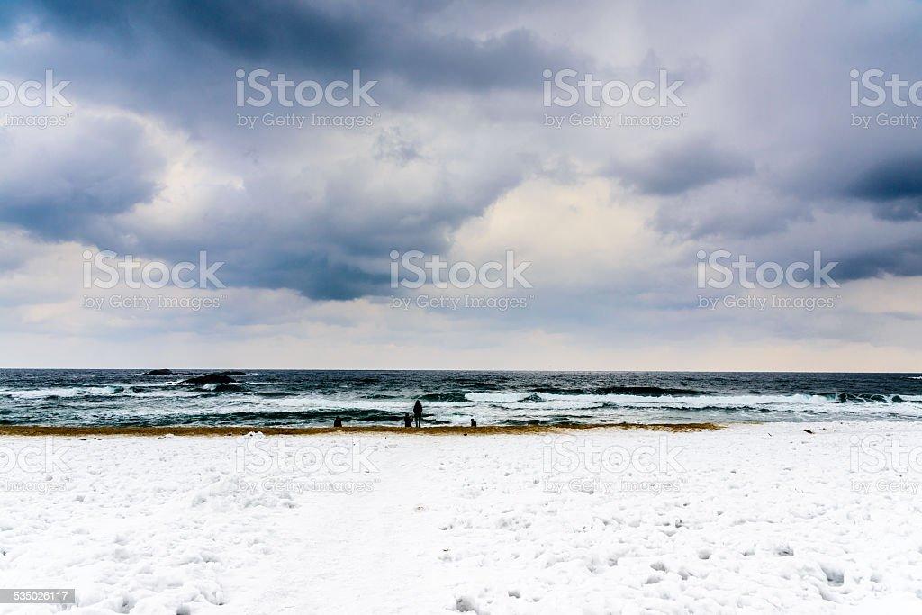 Zima plaży Scena zbiór zdjęć royalty-free