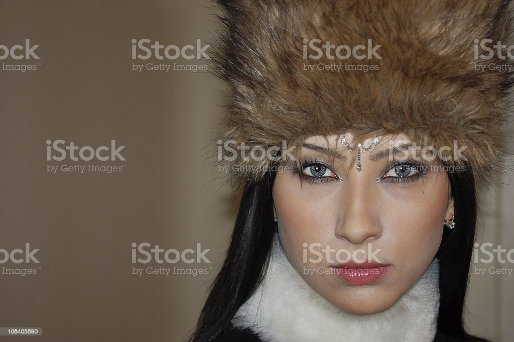 Winter beauty royalty-free stock photo