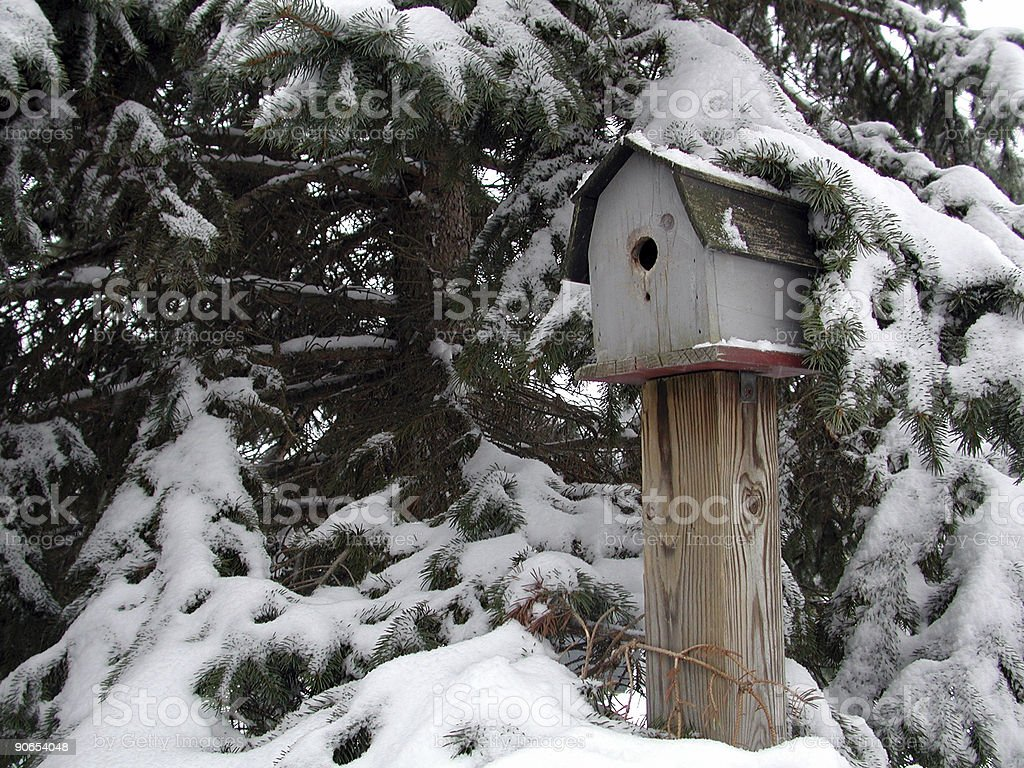 winter birdhouse royalty-free stock photo
