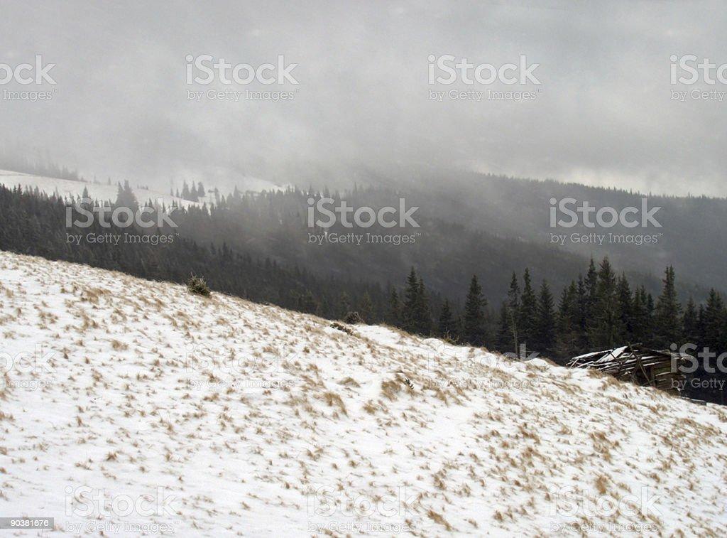 Winter blizzard royalty-free stock photo
