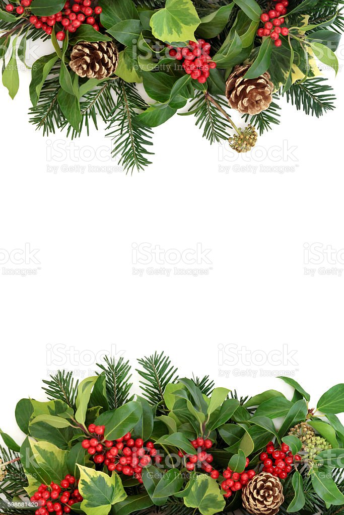 Winter Border with Holly and Flora stock photo