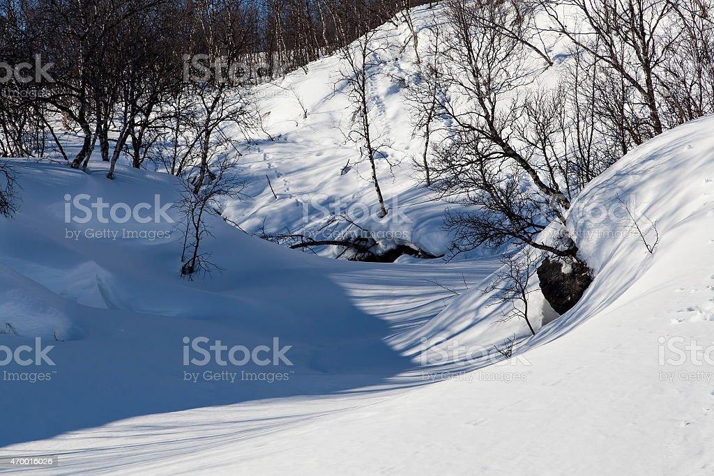 Winter brock royalty-free stock photo