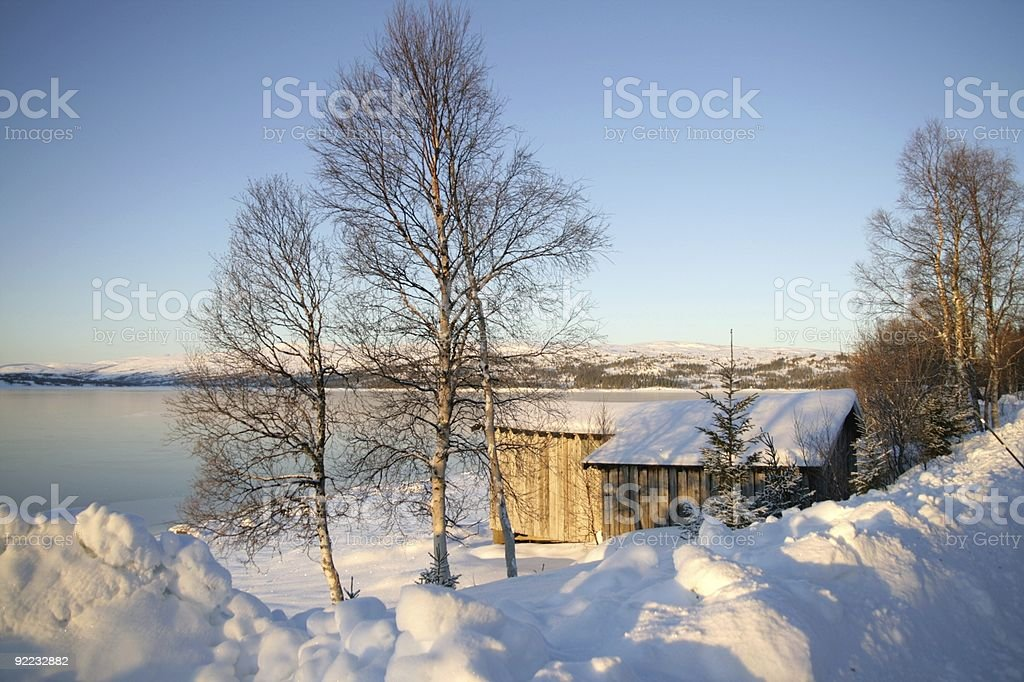 Winter by a lake royalty-free stock photo