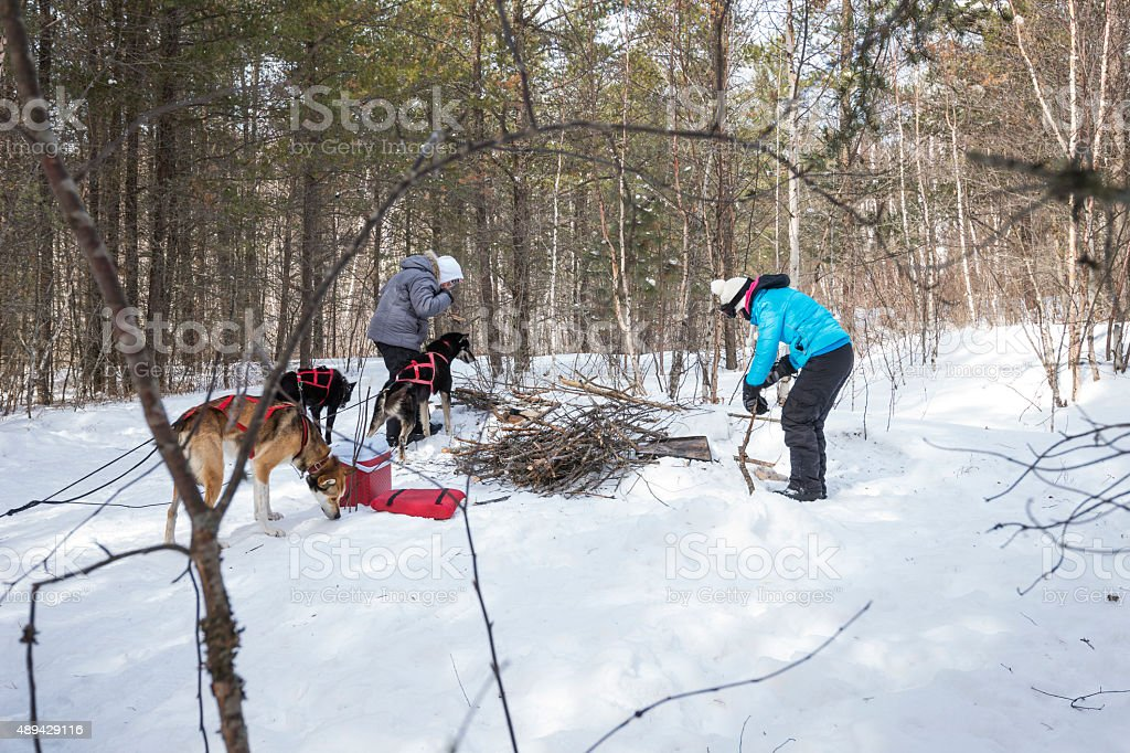Winter campfire in Minnesota stock photo