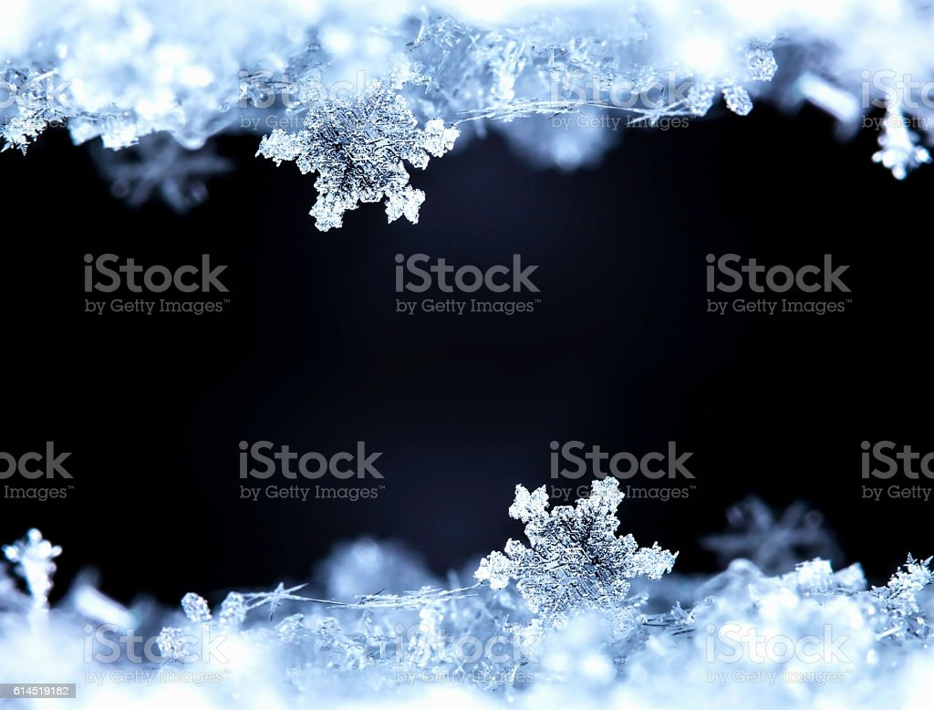 winter card stock photo