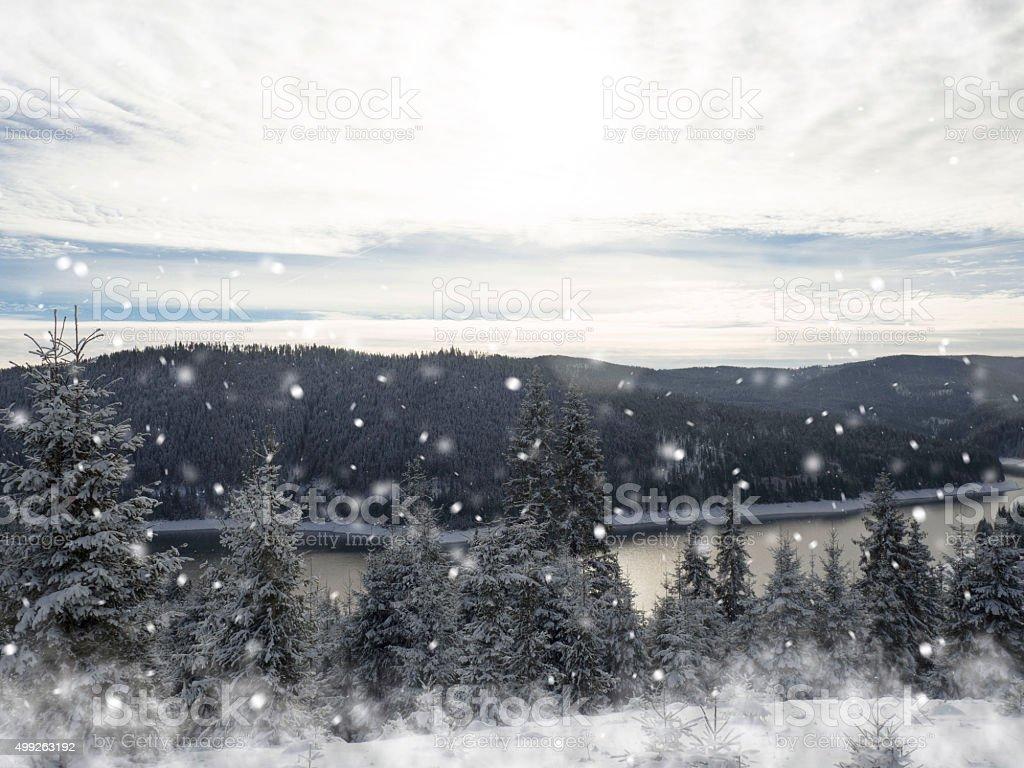 Winter card snowing. Christmas sun stock photo