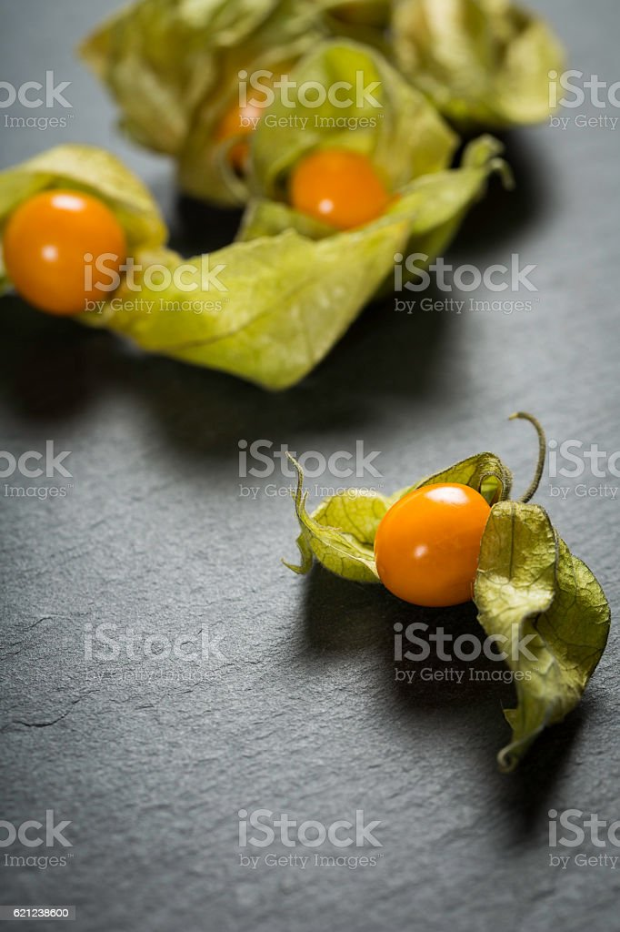 winter cherry - physalis stock photo