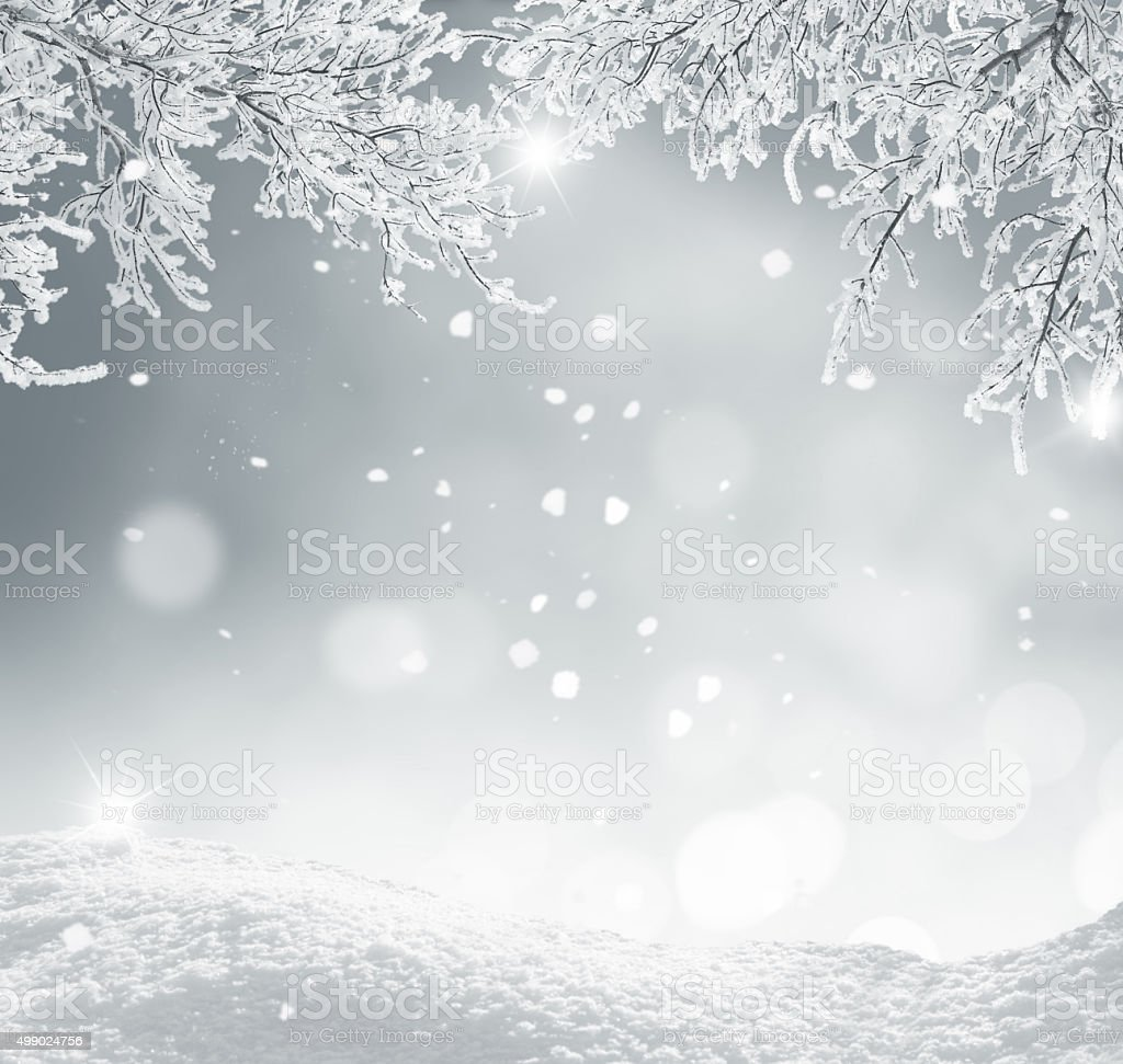 winter christmas background stock photo
