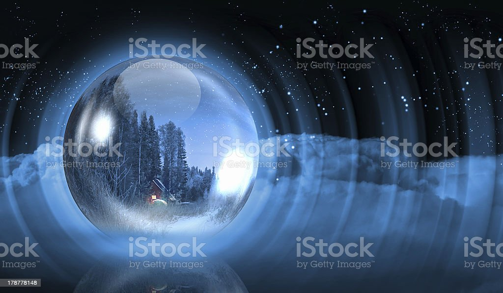 Winter christmas forest royalty-free stock photo