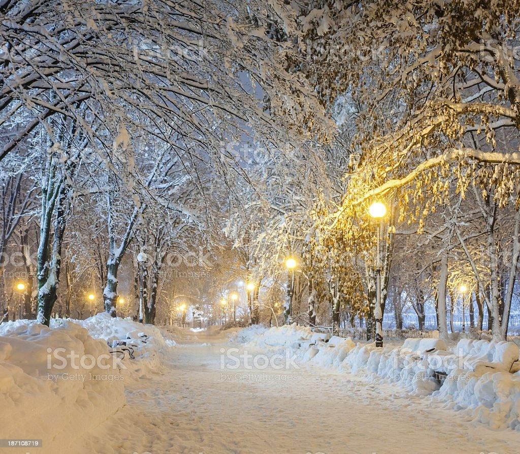 Winter city park royalty-free stock photo
