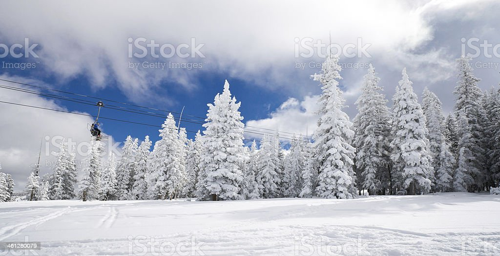 Winter Coniferous Forest Covered by Snow with Ski Lift royalty-free stock photo
