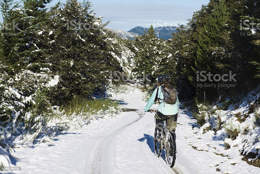 Winter Cycling royalty-free stock photo