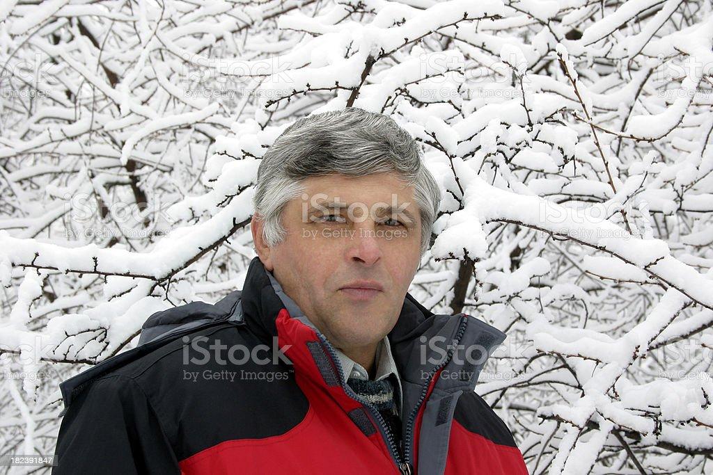 Winter day stock photo